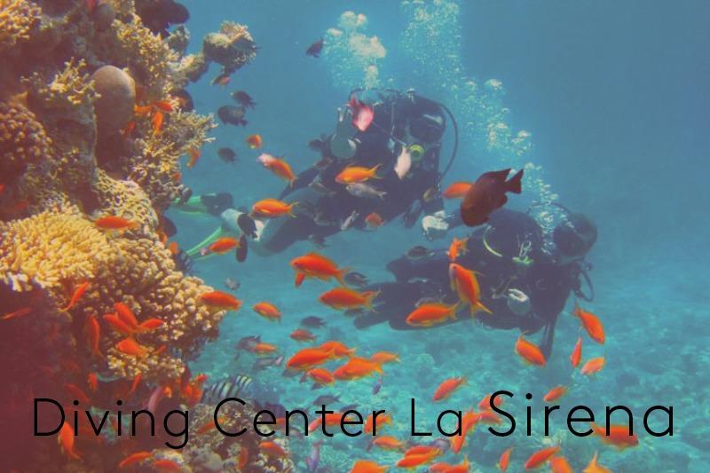 Diving_LaSirena2
